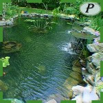 Estanque de agua jardin lona EPDM
